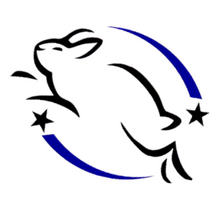 Image result for leaping bunny logo